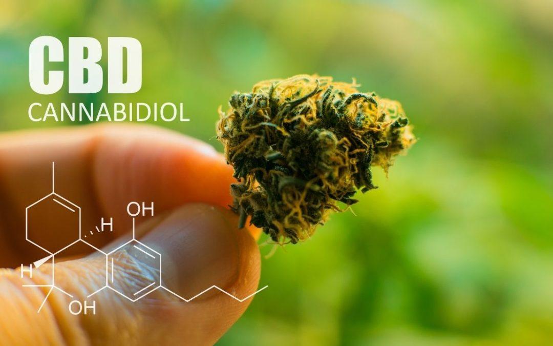 Huile de CBD: Comment fonctionne le cannabidiol et quelle est son utilisation?