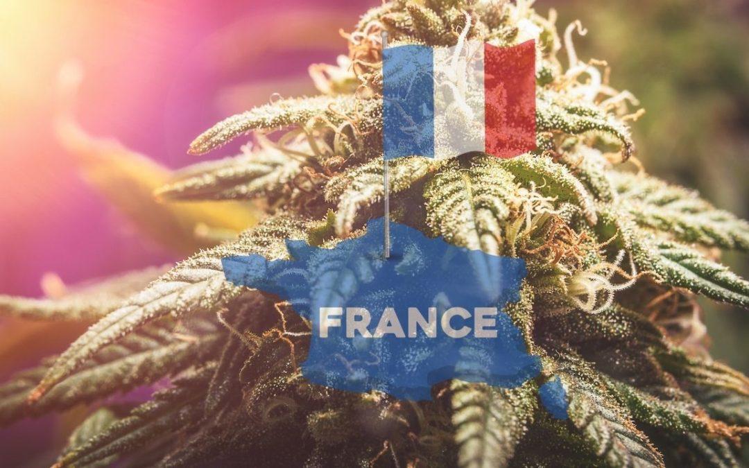 Viva la rivoluzione: la cannabis sarà legale in Francia nel 2022?